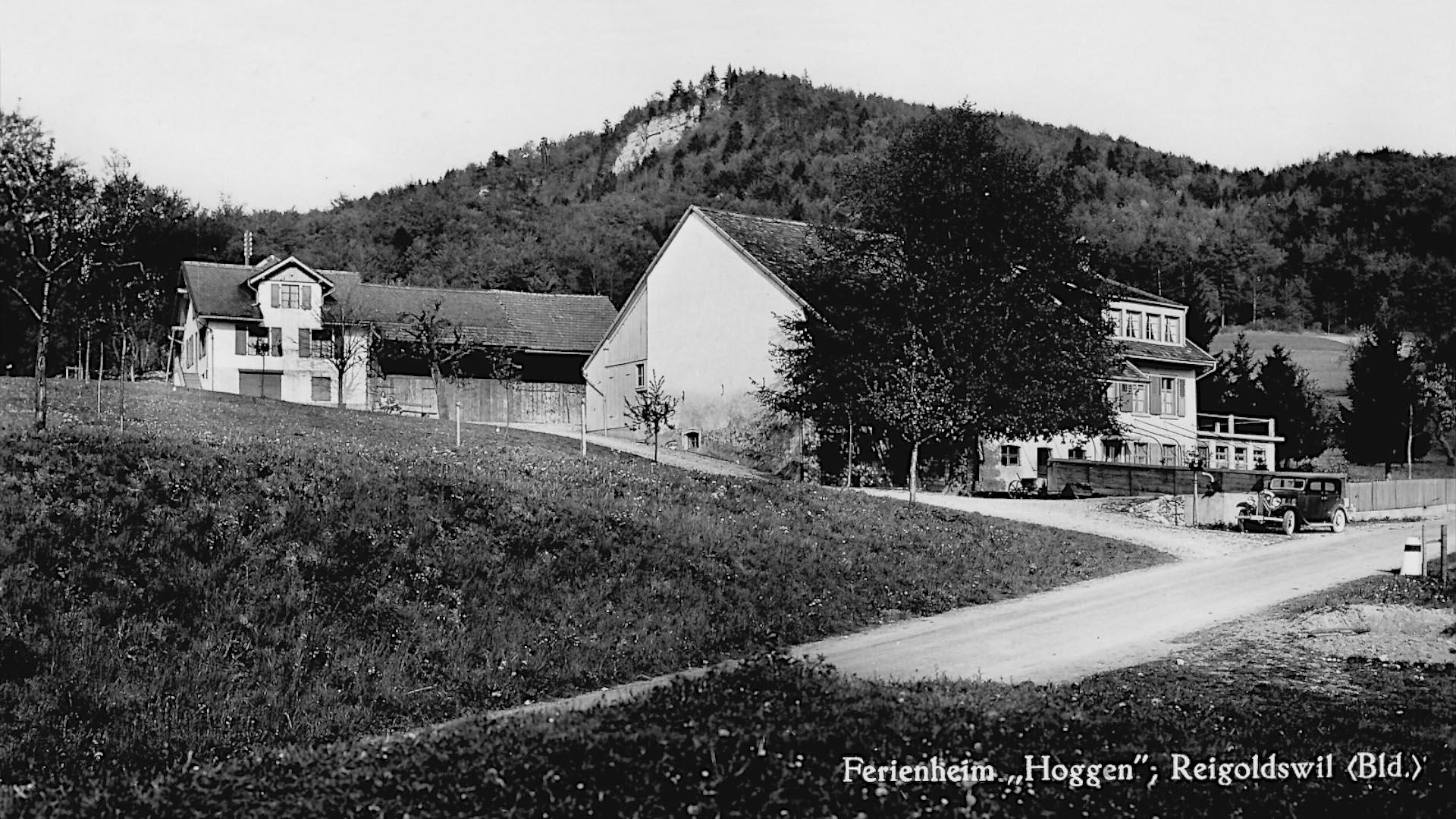 Hof-Hoggen_Aberdeen-Angus_Slider-Betrieb-C